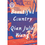 Book cover for Beautiful Country: A Memoir