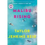 book cover for Malibu Rising: A Novel