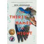 book cover for The Thirty Names of Night